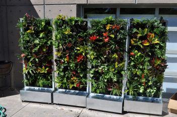 Plants On Walls Vertical Gardens