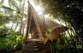 Beautiful Dominican Tree Houses