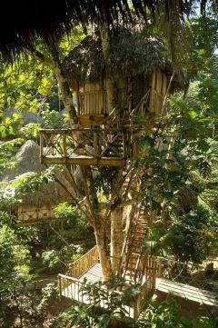 Best Dominican Tree House Ideas