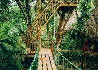 Dominican Village Tree House Ideas