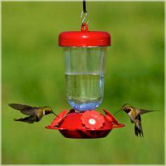 Red Flower Hummingbird Feeder