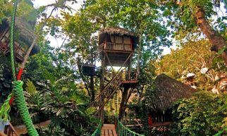 Tree House Village Dominican Republic
