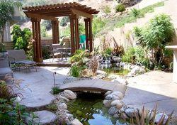 Cool Backyard Pond Idea