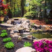 Cool Backyard Pond Ideas