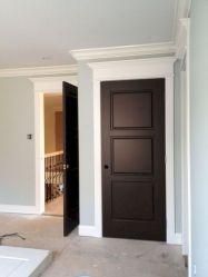 Dark Doors White Trim