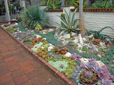 Small Succulent Container Garden Ideas 2