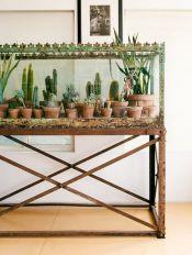Cactus Home Decor Ideas 28