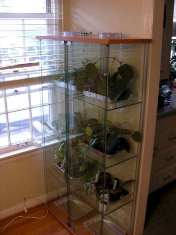 Idea Indoor Greenhouse
