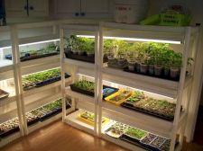 Indoor Greenhouse Design