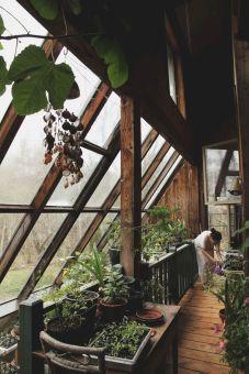 Indoor Greenhouse Porch