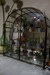 Mini Greenhouses For Indoor Plants