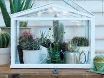 Mini Indoor Greenhouses