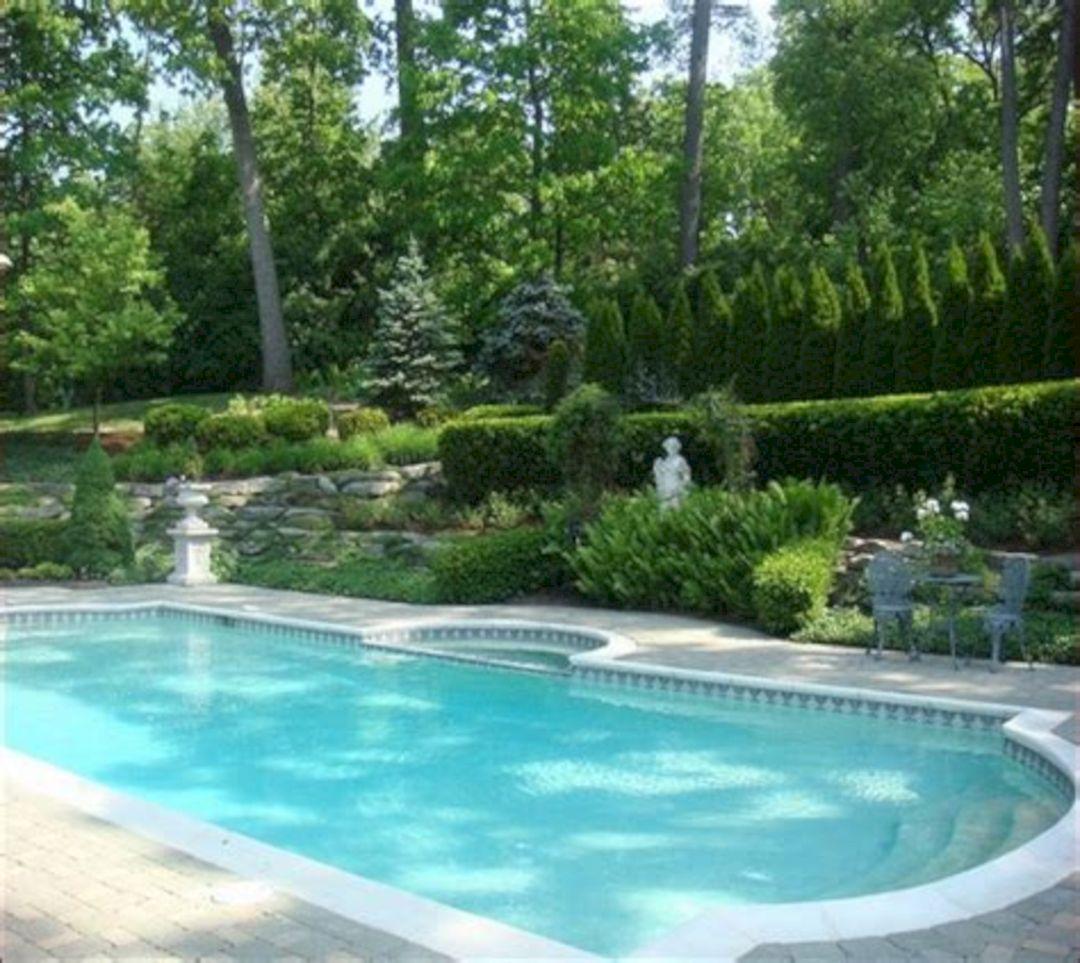 florida pool landscaping ideas