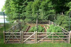 Vegetable Garden Fence Ideas Design