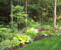 Woodland Garden Landscapings