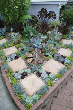 Garden Succulent Ideas 12