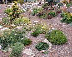 Gorgeous Rock Garden Ideas 5