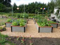 Community Garden Ideas For Inspiration 4