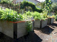 Community Garden Ideas For Inspiration 5