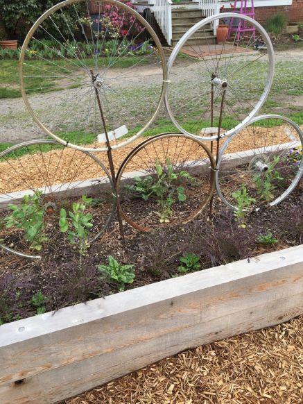 Community Garden Ideas For Inspiration 8
