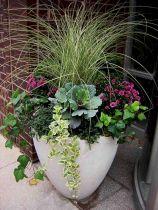 Container Gardening Ideas 14
