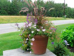 Container Gardening Ideas 19