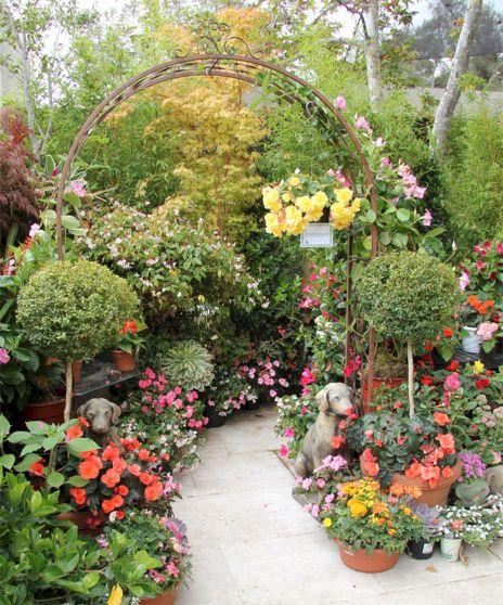 Backyard Flower Garden With Gazebo 15