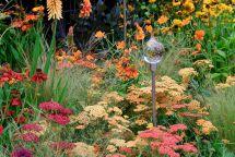 Orange Garden Color Inspiration 11