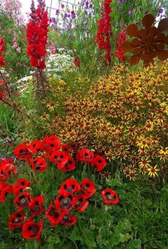 Orange Garden Color Inspiration 20