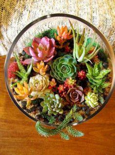 DIY Succulent Terrarium Ideas 12
