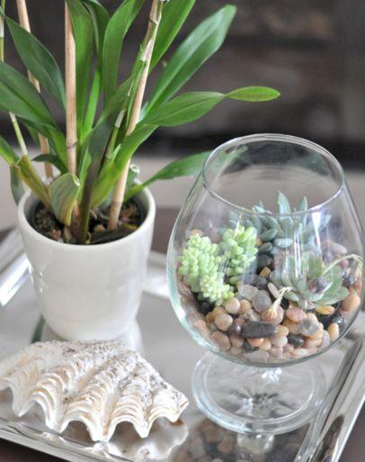 DIY Succulent Terrarium Ideas 3