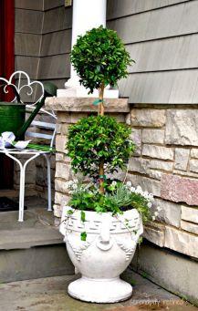 Summer Planter Ideas 21