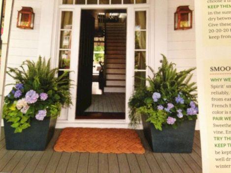 Summer Planter Ideas 26