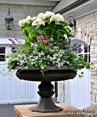 Summer Planter Ideas 3