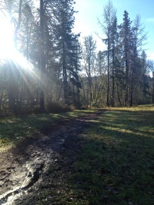 the muddy trails of January