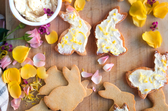 Sweet little Springtime Honey Lemon Cookies (made with cassava flour) that are grain free and dairy free. :)