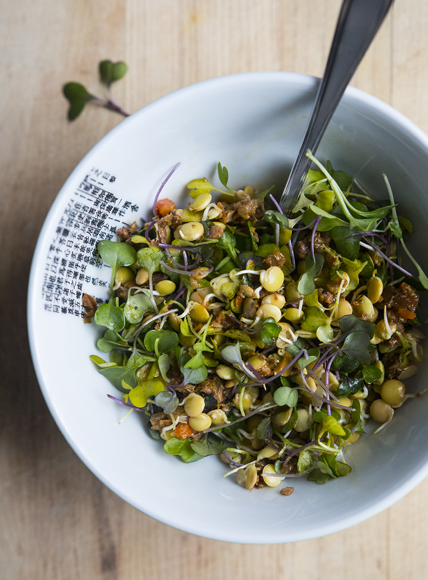 Sprouted Lentils, Kale Microgreens, and Tapenade