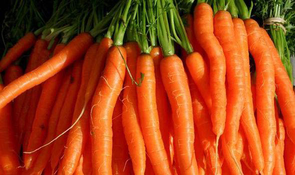 Carrots-Fresh-Produce-Group.jpg