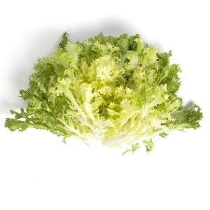 Escarole-Letucce-Fresh-produce-Group1.jpg