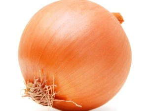 YELLOW-ONION-FRESH-PRODUCE-GROUP-LLC.jpg