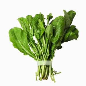 ARUGULA-FRESH-PRODUCE-GROUP-LLC5.jpg