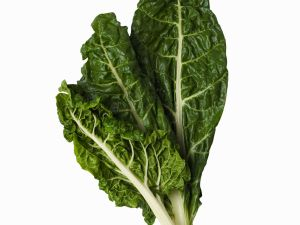 CHARD FRESH PRODUCE GROUP LLC2 - SWISS CHARD FRESH (click image to view)