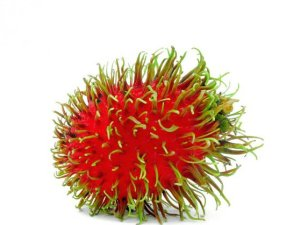 RAMBUTAN-FRUIT-FRESH-PRODUCE-GROUP-LLC4.jpg