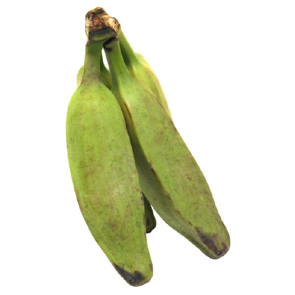 BURRO BANANA FRESH PRODUCE GROUP LLC - JALAPEÑO PEPPER FRESH (click image to view)
