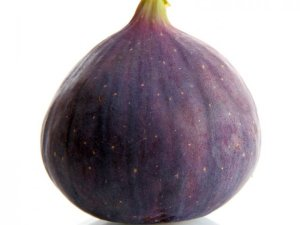 FIG-FRESH-PRODUCE-GROUP-LLC3.jpg