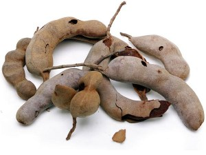 TAMARIND-FRUIT-FRESH-PRODUCE-GROUP-LLC3.jpg