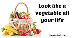Fruits and Vegetables Slogans 3 - CARROT GREENS FRESH (click image to view)