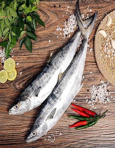 Surmai (सुरमई) Big Size | Freshprotino - buy fresh surmai fish online