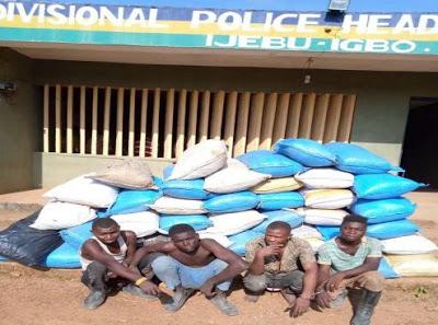 Ogun Indian hemp suspects 494x367 1