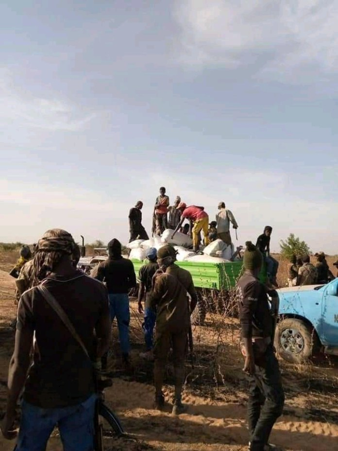 Boko Haram Attack: Rice Farmers Are Heavily Guilded By Armed Soldiers In Zabarmari (Photos)
